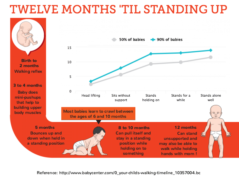12 months until standing up
