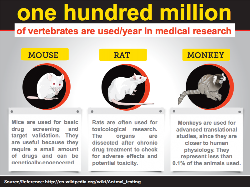 Animals used in Drug Development