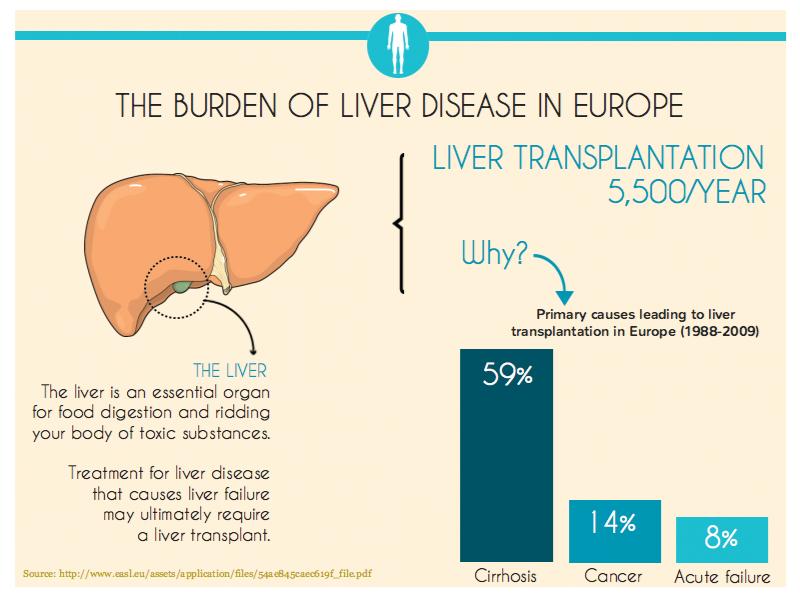 Burden liver disease in Europe