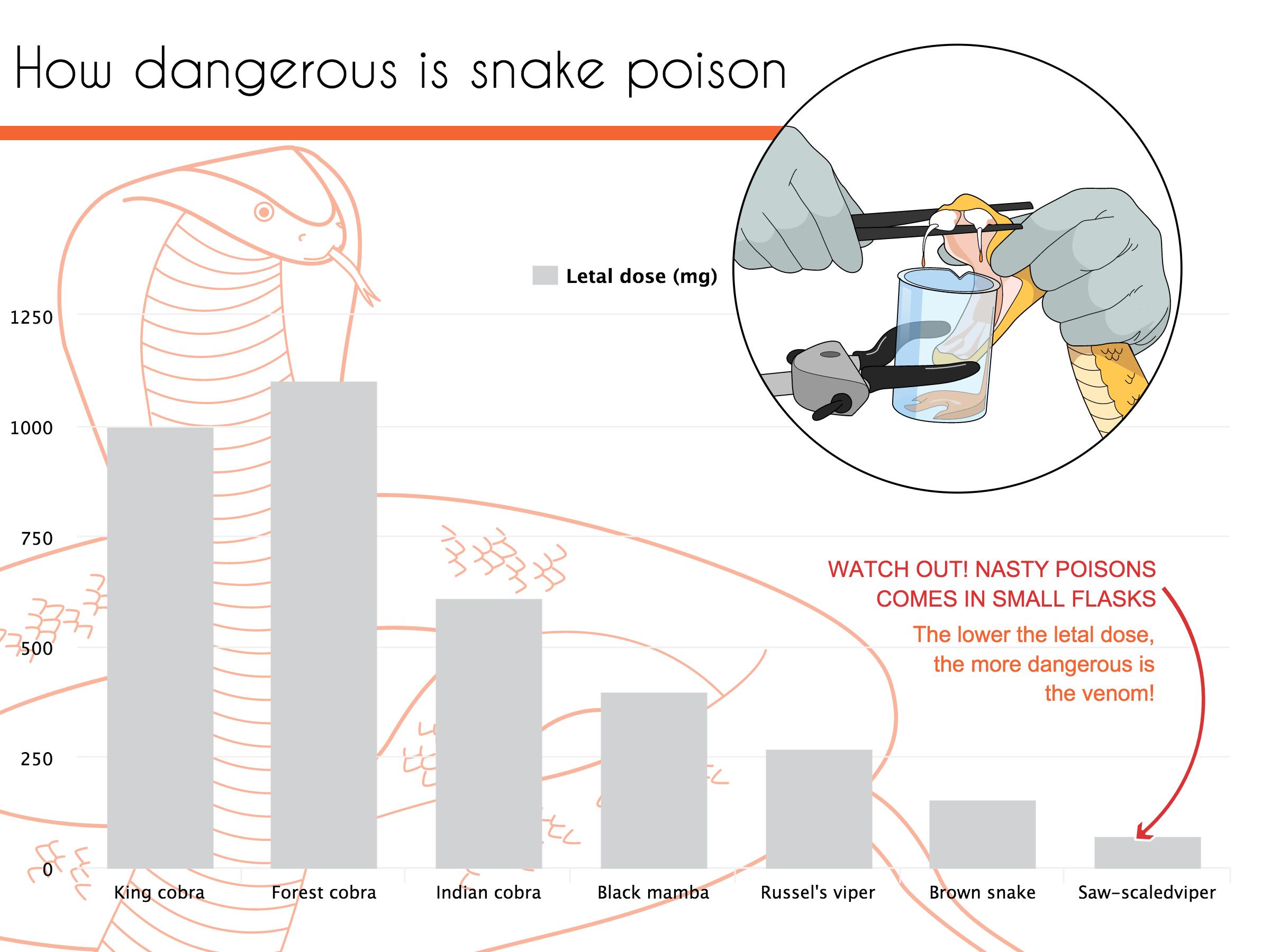 How dangerous is snake poison