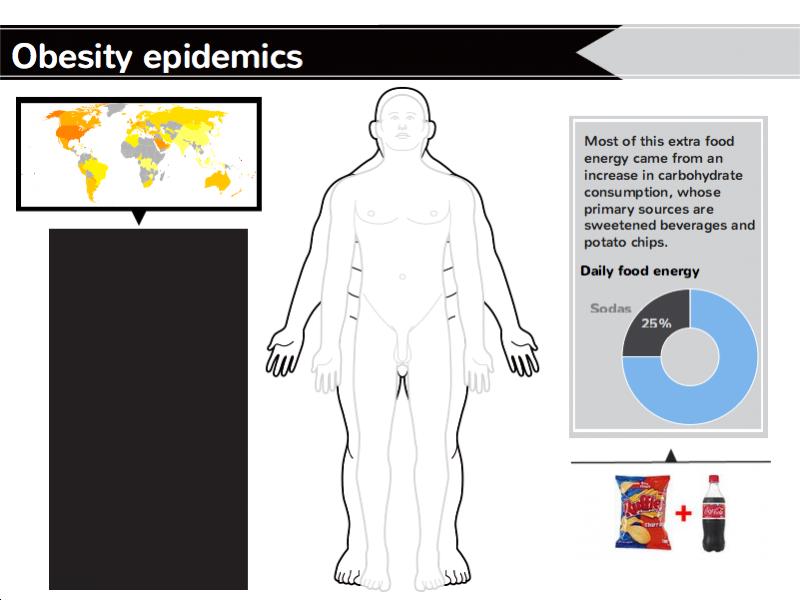 Obesity epidemics