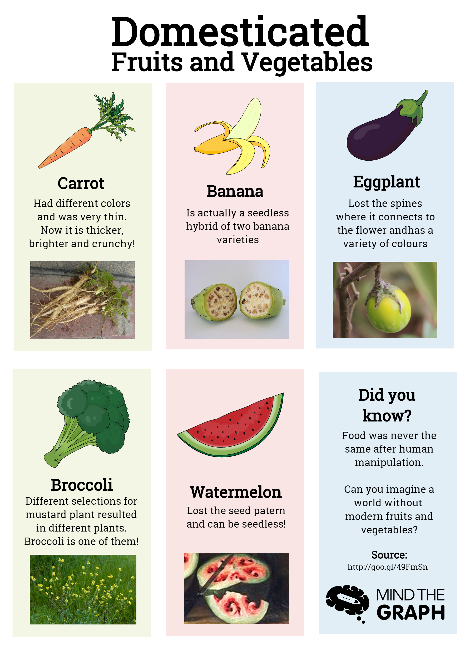 Domesticated fruits and vegetables